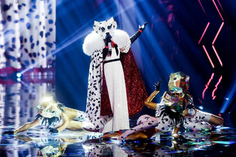 """""""The Masked Singer"""":Erster Promi enttarnt"""