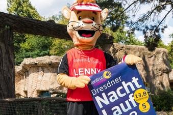 Beim Dresdner Nachtlauf ist der Löwe los