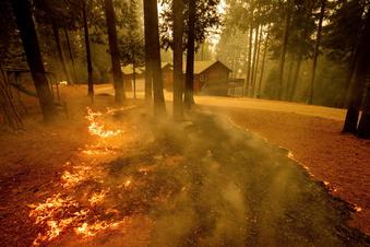 Dutzende Waldbrände in Kalifornien