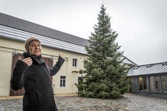 Keine Weihnachtsbäume wegen Klimawandel?