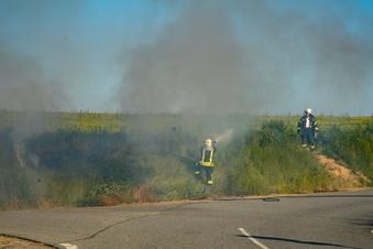 Bischofswerda: Feuerwehr löscht Wiesenbrand