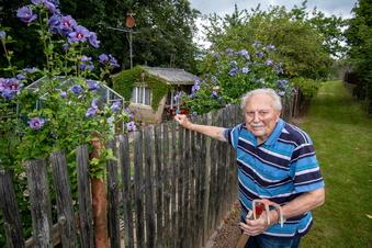 Waldheim: Ein Gartenzaun aus Resten