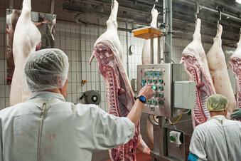 Razzien in der Fleischindustrie