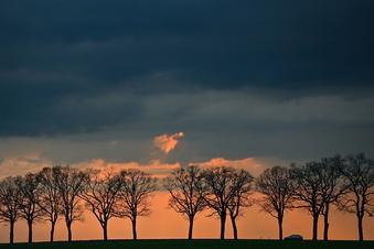 Wetter: Sturmböen und Gewitter in Sachsen