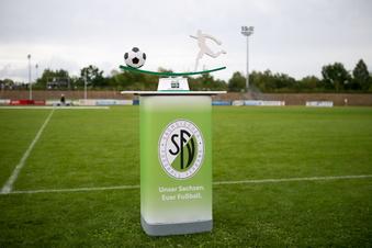 Verband lobt Dynamo für Pokal-Einsatz
