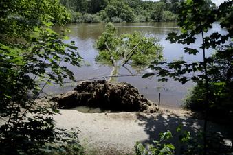 Nach Hochwasser in Görlitz: Neißeradweg gesperrt