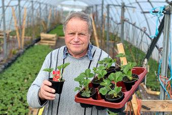 Corona trifft Bauern und Gartenbauer