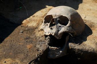 Forscher rechnen mit weiteren Skeletten