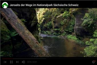 Diskussion um Video aus der Sächsischen Schweiz