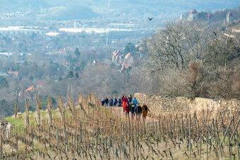 Kilometer für Vereine in Radebeul erlaufen