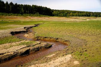 Klimawandel in Sachsen: Herausforderung für die Zukunft