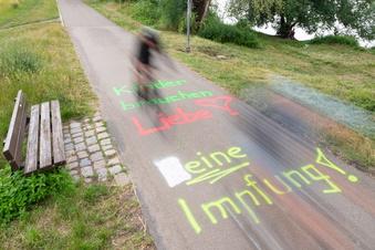 Schmierereien auf Elberadweg in Dresden