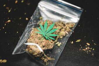 Alaunpark: Teenagerin hat Cannabis dabei