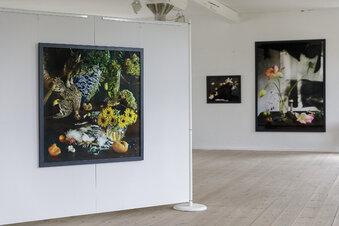 Weltbekannte Kunst im Görlitzer Fotomuseum