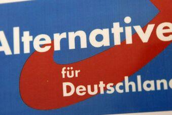 AfD formiert sich vor Bundestagswahl