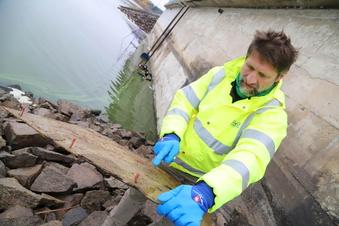 Quitzdorf: Stausee-Sanierung dauert vermutlich bis 2030