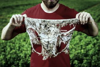 Schweizer vergraben 2.000 Unterhosen