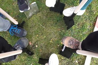 Großröhrsdorfer Schüler gestalten Wildblumenwiese