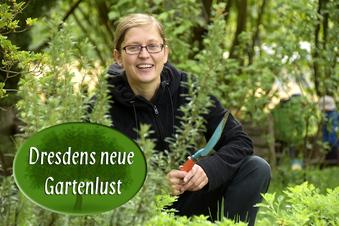 Wo die Dresdner ihre Pflanzen tauschen