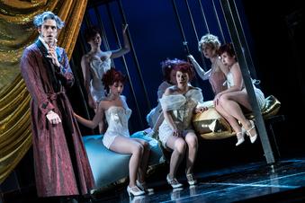 Freiberger Theater wagt sich an das große Musical