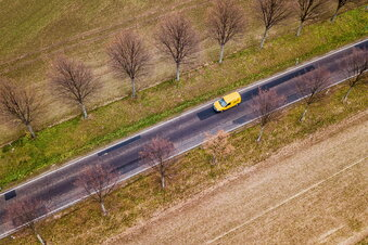 Baumdebatte verzögert Straßenbau