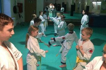 Karateverein wirbt digital um Nachwuchs