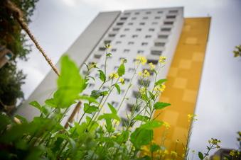 Hilbert will Vonovia-Wohnungen zurückkaufen