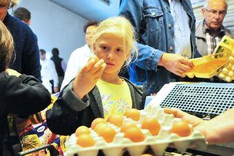Sächsische Eier für Bayern