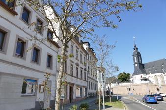 Rotdorne in Waldheim unter Beobachtung