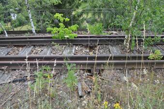 Wieder Lagerfeuer im Bahngleis gemacht