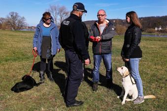 Tödliche Gefahr für Hunde am Elbufer