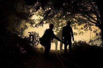 US-Waldbrände fordern Dutzende Tote
