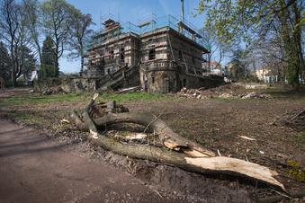 Ämterärger um Bäume an der Erlwein-Villa
