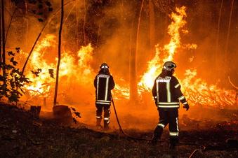 Hohe Waldbrandgefahr im Landkreis Bautzen
