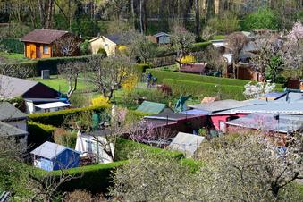 Kleingärten werden in Corona-Pandemie neu entdeckt