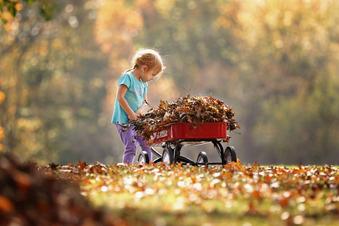 Tipps für die Herbstferien