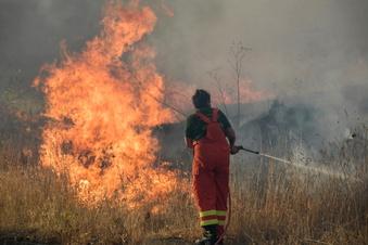 130 Brandstiftungs-Anzeigen in Italien