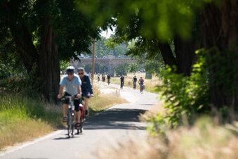Mitgliederrekord beim Fahrrad-Club ADFC