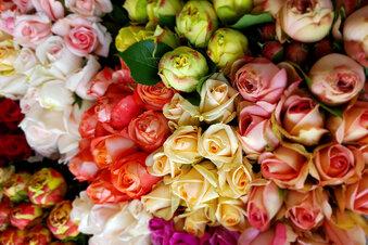 Keine rosigen Aussichten für den Blumenhandel