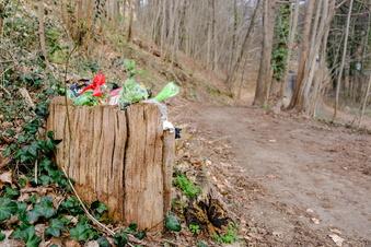 Millionen Tonnen Müll in Sachsens Natur