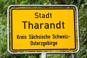 Tharandt sucht Experten für Klimaschutz