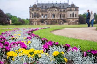 Neun Hochzeitstermine in Dresdens größtem Park