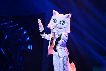"""""""Masked Singer:"""" Katze ist Musiklegende"""
