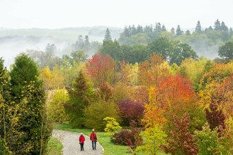 Tipps für die Herbstferien in Mittelsachsen