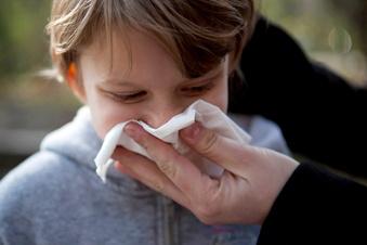 Die Grippewelle erreicht Sachsen