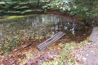 Wieder Randale im Schlosspark Graupa