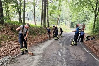 Ungewöhnlicher Feuerwehreinsatz in Geringswalde