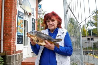Hoffnung für Neugersdorfs Fischladen