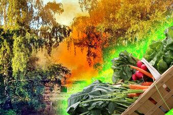 Nach Chemieunfall: Gemüse nicht essen