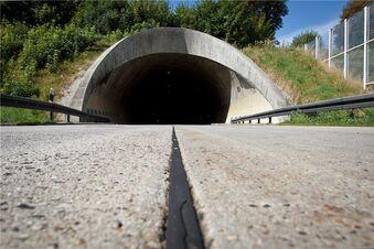 Autobahntunnel bleibt offen